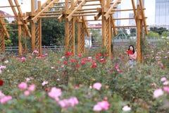室外的美女在花附近坐的俏丽的亚裔中国妇女起来了公园庭院感觉无忧无虑的白种人消遣阅读书 免版税库存照片