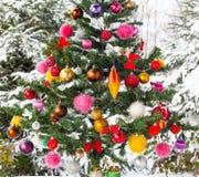 室外积雪的圣诞树 免版税库存照片