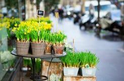 室外花市场 图库摄影