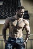 室外英俊的赤裸上身的肌肉年轻的人 库存图片