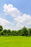 室外草坪,蓝天 免版税图库摄影