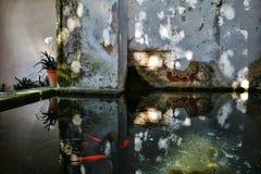 室外装饰在辛特拉全国宫殿庭院里  库存照片
