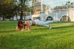 室外训练和锻炼 图库摄影