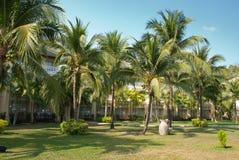 室外设计和庭院在泰国 免版税图库摄影