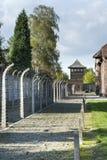 室外走道标示用在奥斯威辛阵营II的被使充电的铁丝网 免版税库存照片