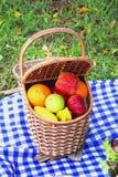室外野餐的篮子 库存照片