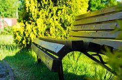 室外长凳在夏天公园 特写镜头 图库摄影