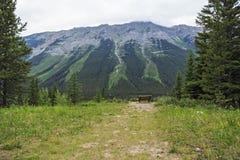 室外长凳有自然一个完善的看法  免版税库存照片