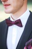 室外黑服装和purpure的弓领带的典雅的新郎 免版税库存照片