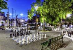 室外chessgame,本营公园,日内瓦 免版税库存照片