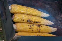室外Griled的玉米- 免版税库存照片