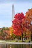 宪法庭院华盛顿特区在秋天 库存照片