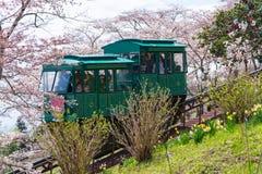 宫城,日本- 2017年4月13日:游人倾斜通过汽车通行证 免版税库存图片