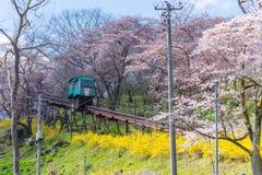 宫城,日本- 2017年4月13日:游人倾斜通过汽车通行证 免版税库存照片