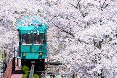 宫城,日本- 4月16 :倾斜汽车做它的在足迹下的方式 免版税图库摄影