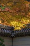 宫岛寺庙在秋天 库存图片