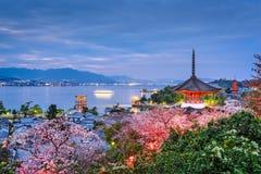 宫岛,日本在春天 图库摄影