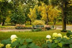 宫殿公园,奥斯陆,挪威 库存照片