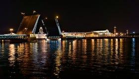 宫殿桥梁夜视图在圣彼德堡 库存照片