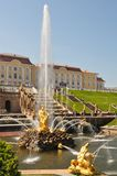 宫殿peterhof观光彼得斯堡的sankt 库存照片