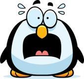 害怕的小的企鹅 库存图片