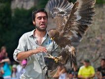 害怕的鸟培训人 免版税图库摄影
