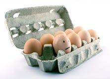 害怕的鸡蛋 免版税库存照片