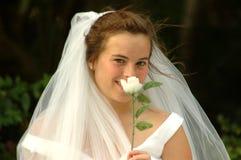 害羞的新娘 免版税库存图片
