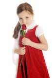 害羞的玫瑰花蕾女孩 免版税库存照片
