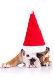 害羞逗人喜爱的小的圣诞老人 免版税库存照片