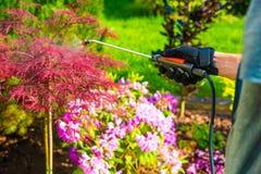 害虫控制在庭院里 库存照片