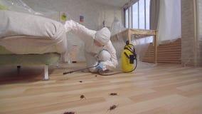 害虫控制工作者有在家站立的喷雾器的和在长沙发下 影视素材