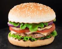 家做汉堡 免版税库存图片