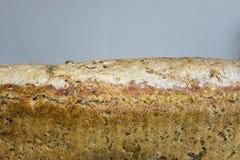 家制面包用蔓越桔和其他添加剂 烹调小馅饼波兰 库存图片