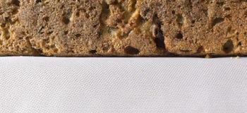 家制面包用蔓越桔和其他添加剂 免版税库存照片