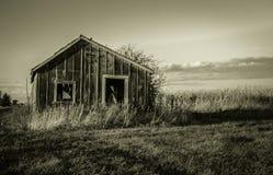 家庭农场的死亡 库存照片