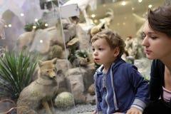 家庭参观的博物馆 免版税库存照片