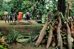 家庭和亲戚会集的食物作为一提供礼节传统割除阴茎庆祝的在村庄 库存图片