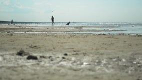 家庭和各种各样的人由后面照的剪影在度假在海滩的 影视素材
