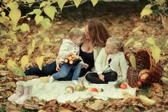 家庭在秋天森林里 免版税库存照片