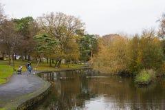 家庭在秋天走通过病区公园在曼格唐郡在北爱尔兰 免版税库存图片