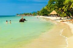 家庭在水和戏剧享受在热带海滩酸值张的暑假,游泳与大象 免版税库存照片