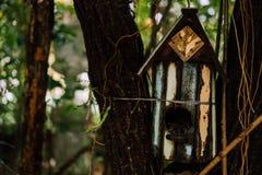 家庭室内装饰的热带英国庭院样式 免版税库存照片