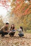 家庭投掷的叶子在公园在秋天 库存图片