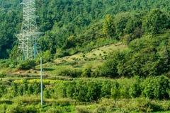 家庭掩埋处和白色电子塔风景  图库摄影