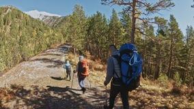 家庭旅行 由山,河,小河的人环境 使用迁徙的杆,父母和孩子走 人和 影视素材