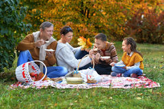家庭有野餐在公园 免版税库存照片