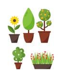 家庭植物和树例证 库存图片
