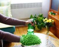 家庭清洁产品、海绵和洗涤剂在妇女手上那干净玻璃桌 库存图片