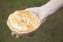 家庭焙制的饼 免版税库存照片